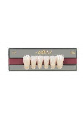 DENTS ODILUX